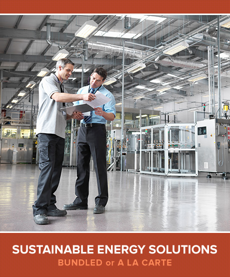 Sustainable Energy Solutions - Bundled or a la Carte